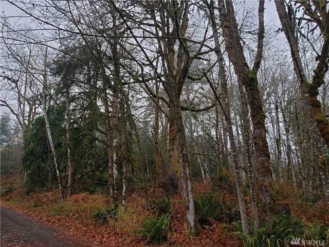 0-XXX SE Binns Swiger Loop Rd, Shelton, WA 98584 (#1540916) :: NW Homeseekers
