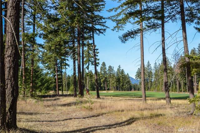 600 Tipple Hill Lp, Cle Elum, WA 98922 (#1541209) :: Sarah Robbins and Associates