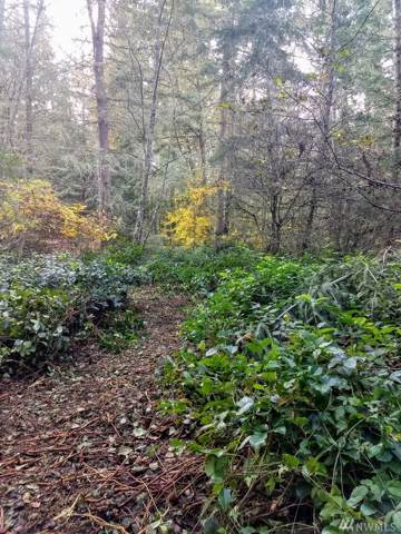 0-Lot  B NE Bucsit Lane NE, Bainbridge Island, WA 98110 (#1541483) :: Center Point Realty LLC