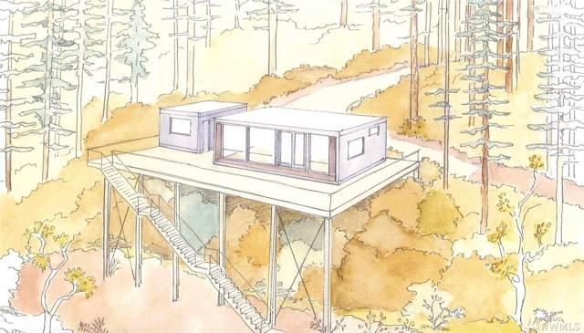 1111 Pulali Point Rd, Brinnon, WA 98320 (#1541599) :: Crutcher Dennis - My Puget Sound Homes