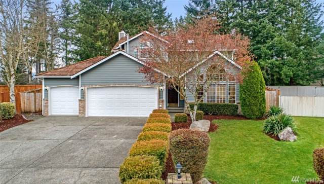 23066 SE 243rd Place, Maple Valley, WA 98038 (#1542417) :: Real Estate Solutions Group