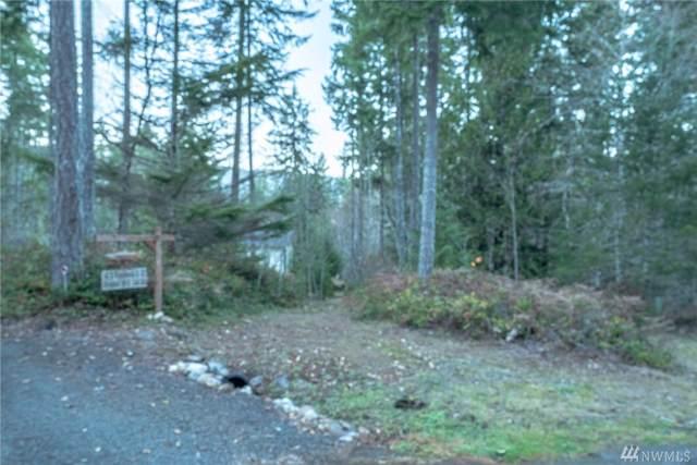 32 N Woodduck Ct W, Hoodsport, WA 98548 (#1543047) :: Chris Cross Real Estate Group