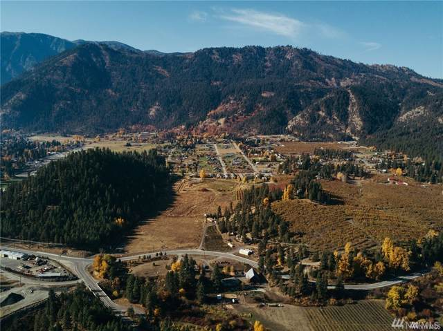 0 Titus Rd, Leavenworth, WA 98816 (#1543083) :: Capstone Ventures Inc