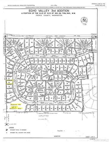 55414 310th Av Ct E, Ashford, WA 98304 (#1543442) :: Real Estate Solutions Group