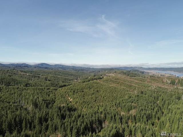 0 Parpala Rd, Naselle, WA 98638 (#1543614) :: Real Estate Solutions Group