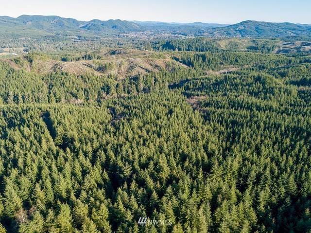 2 Dell Creek Mainline, Naselle, WA 98638 (#1543643) :: Engel & Völkers Federal Way