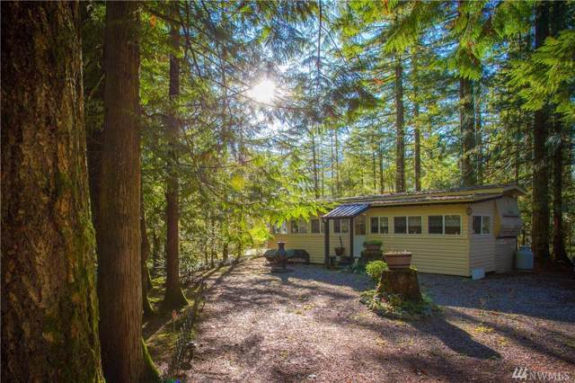 177-1 Fireside Lodge Cir, Deming, WA 98244 (#1543920) :: Ben Kinney Real Estate Team
