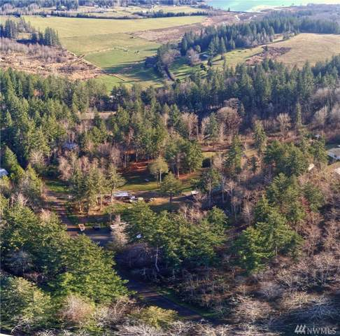 13934 Center Rd, Quilcene, WA 98376 (#1543939) :: Mike & Sandi Nelson Real Estate