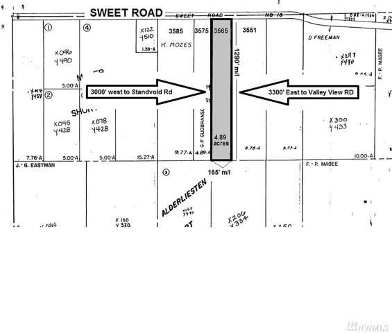 3565 Sweet Road Rd, Blaine, WA 98230 (#1544097) :: Lucas Pinto Real Estate Group
