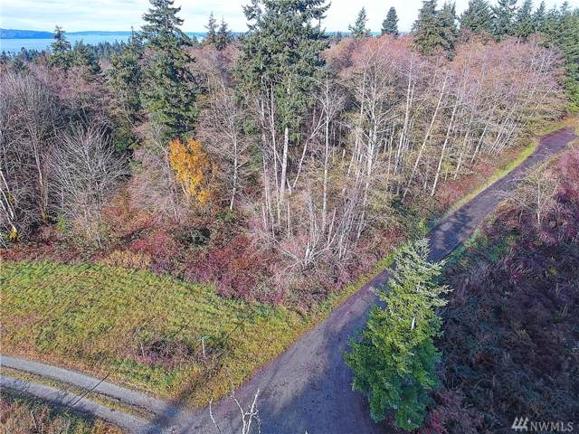 3788 Berry Blvd, Camano Island, WA 98282 (#1544323) :: Alchemy Real Estate