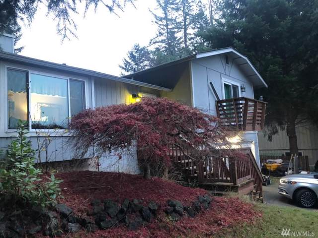 3242 Frances Dr SE, Lacey, WA 98503 (#1544421) :: Tribeca NW Real Estate