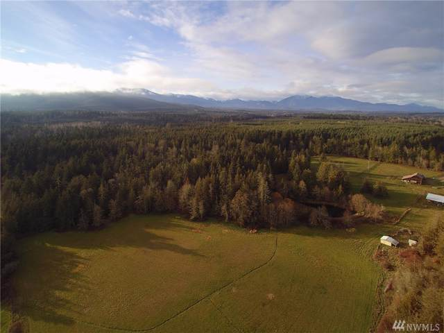 99999 Atterberry Parcel B Lot B, Sequim, WA 98382 (#1545289) :: Hauer Home Team