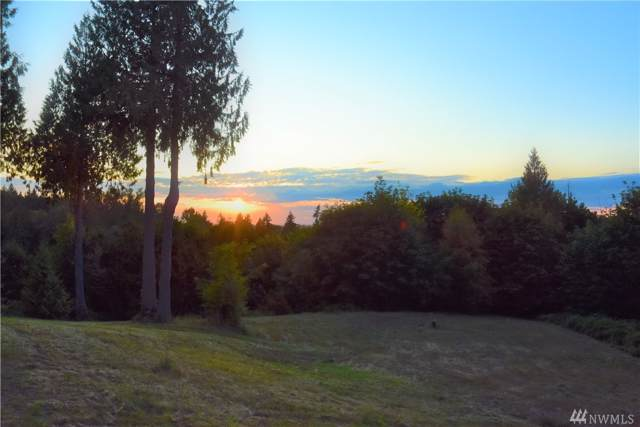 26530 Black Nugget Rd, Issaquah, WA 98029 (#1545529) :: Lucas Pinto Real Estate Group
