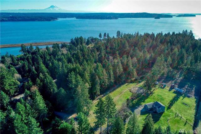 12312 110th St KP, Gig Harbor, WA 98329 (#1545574) :: Lucas Pinto Real Estate Group