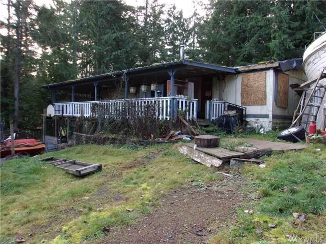 161 Dogwood Lane, Brinnon, WA 98320 (#1545831) :: KW North Seattle