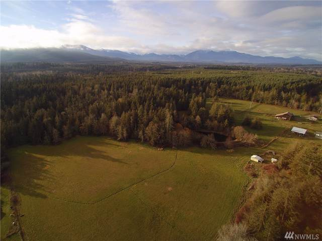99999 Atterberry Rd Parcel A, Sequim, WA 98382 (#1545857) :: Hauer Home Team
