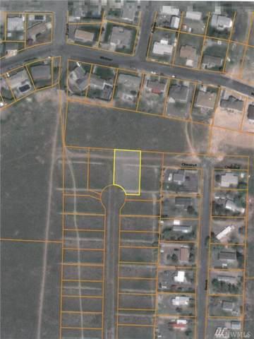 651 NE Hargraves Ave NE, Royal City, WA 99357 (#1546185) :: Northwest Home Team Realty, LLC