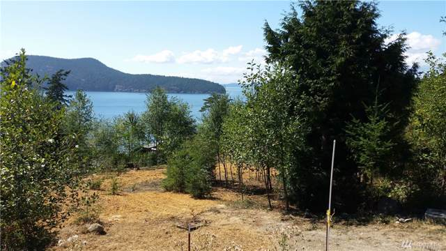 4302 Osprey Lane, Anacortes, WA 98221 (#1546224) :: Northern Key Team