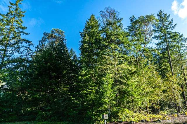 0 Doe Place - Lot 48, Sequim, WA 98382 (#1546267) :: Hauer Home Team