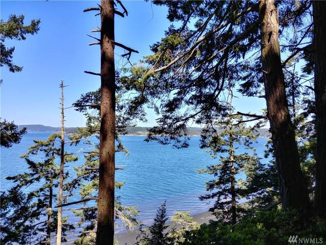 285 Mozart Lane, Lopez Island, WA 98261 (#1548203) :: Ben Kinney Real Estate Team