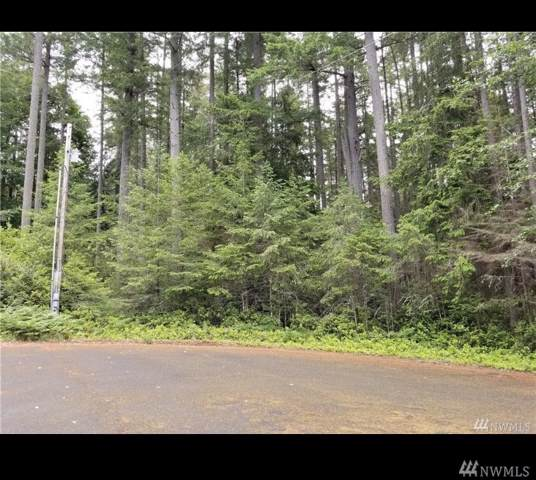 12502 93rd St Ct, Anderson Island, WA 98303 (#1548279) :: Center Point Realty LLC
