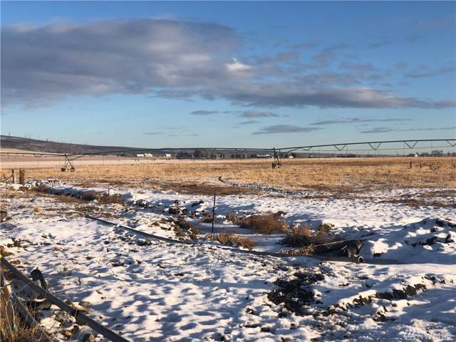 4-Lot Lyons Rd, Ellensburg, WA 98926 (#1548441) :: Real Estate Solutions Group