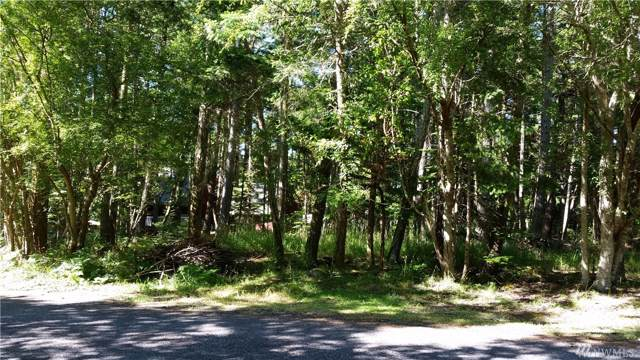 0 Island Drive, San Juan Island, WA 98250 (#1548485) :: Northern Key Team