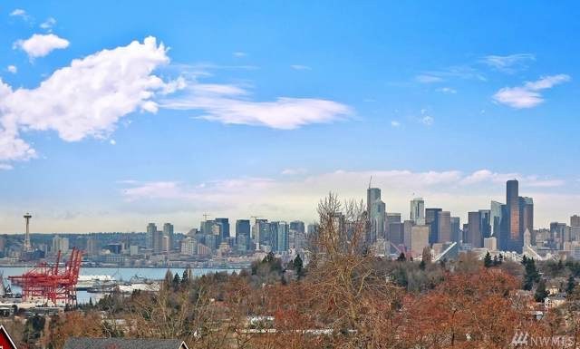 2960 SW Raymond St #304, Seattle, WA 98126 (#1549012) :: Real Estate Solutions Group