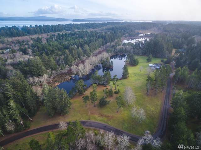33-x1 V Place, Oysterville, WA 98641 (#1549063) :: Hauer Home Team