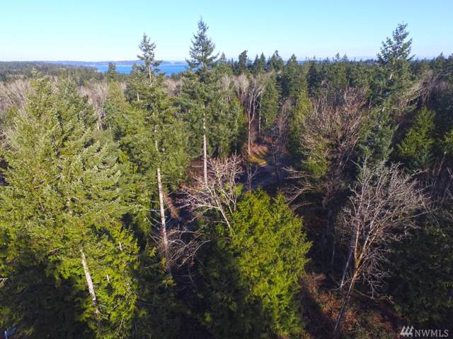 5-Lot 5 Forest View Lane, Port Orchard, WA 98366 (#1549351) :: The Kendra Todd Group at Keller Williams