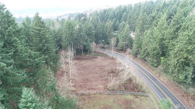 16822 Forest Canyon Rd E, Sumner, WA 98390 (#1549491) :: KW North Seattle