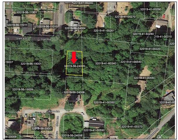 0-xx Grant Ave, Shelton, WA 98584 (#1550719) :: Real Estate Solutions Group