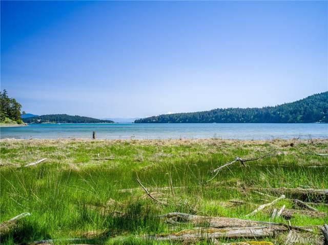 0 Schruder Rd, Lopez Island, WA 98261 (#1550924) :: Ben Kinney Real Estate Team