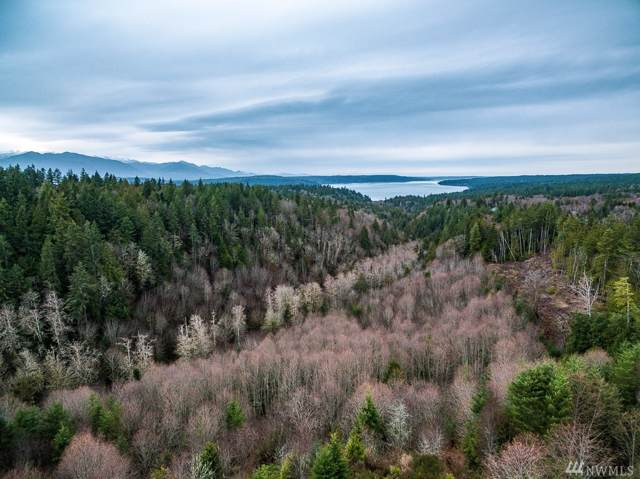 0 Icicle Place NW, Silverdale, WA 98383 (#1551071) :: Costello Team