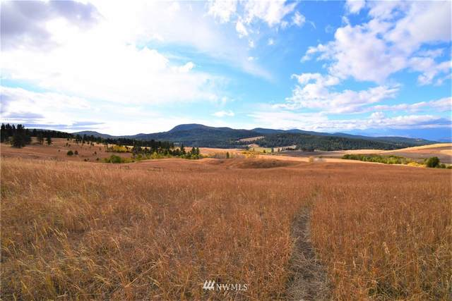 1174 Chesaw Road, Oroville, WA 98844 (#1551521) :: Mike & Sandi Nelson Real Estate