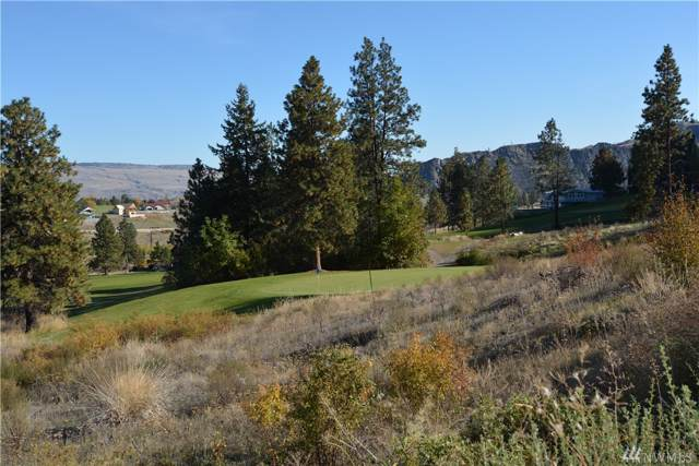 3 Alpine Addition, Pateros, WA 98846 (#1551733) :: Real Estate Solutions Group