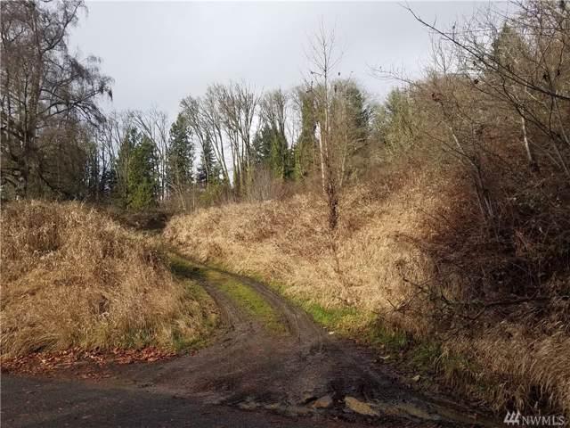 205 Bergly Lane, Longview, WA 98632 (#1552143) :: The Shiflett Group