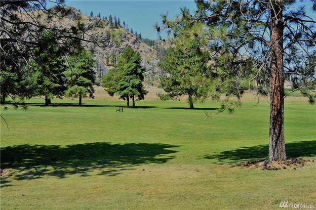 103 Golf Course Dr, Pateros, WA 98846 (#1552380) :: Keller Williams Western Realty