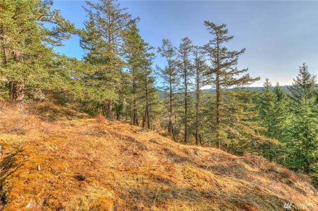 224 Salish Way, Orcas Island, WA 98279 (#1552476) :: Ben Kinney Real Estate Team