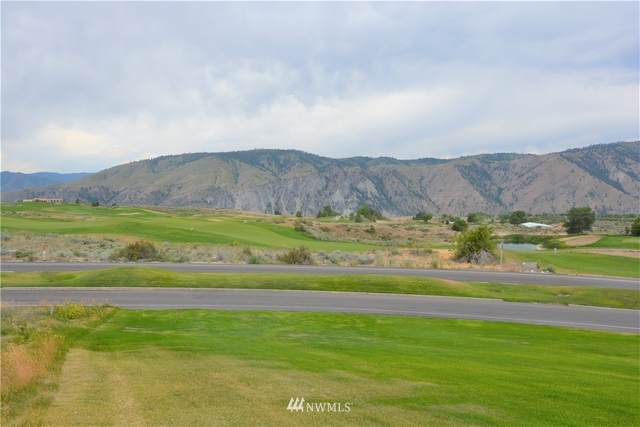 203 Desert Canyon Boulevard, Orondo, WA 98843 (#1552779) :: Shook Home Group