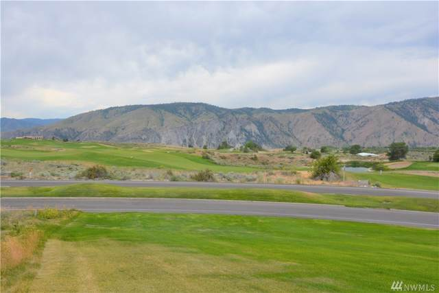203 Desert Canyon Boulevard, Orondo, WA 98843 (#1552779) :: Priority One Realty Inc.