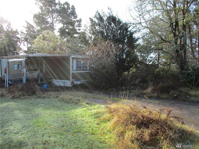 4348 Pine Lane, Tokeland, WA 98590 (#1553026) :: Record Real Estate