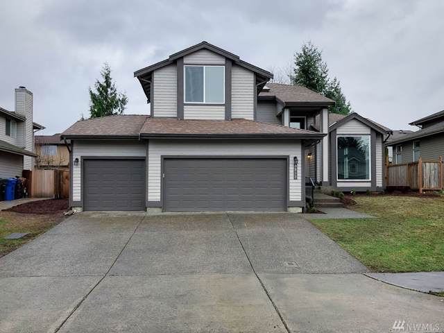 3813 45th Ave NE, Tacoma, WA 98422 (#1553197) :: Canterwood Real Estate Team