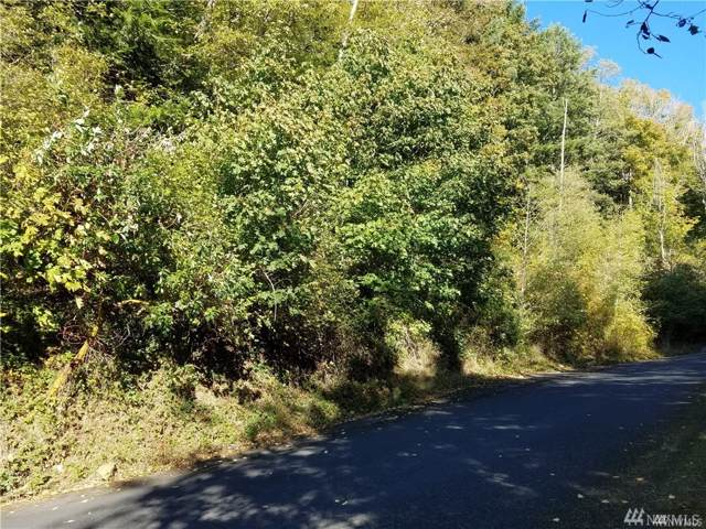 18 Maple Ridge, Cathlamet, WA 98612 (#1553683) :: Alchemy Real Estate