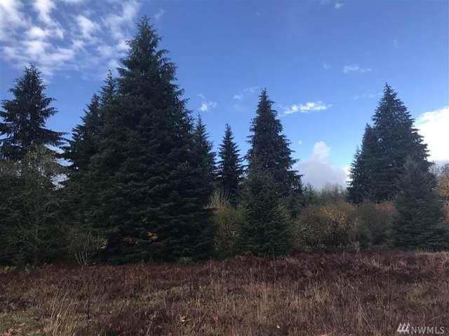 162 Woodsy Lane, Onalaska, WA 98570 (#1553699) :: Hauer Home Team