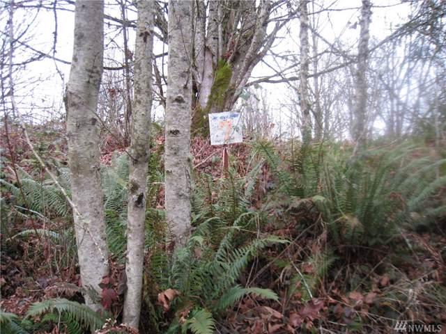 143 Solo View Dr, Longview, WA 98632 (#1553769) :: Crutcher Dennis - My Puget Sound Homes