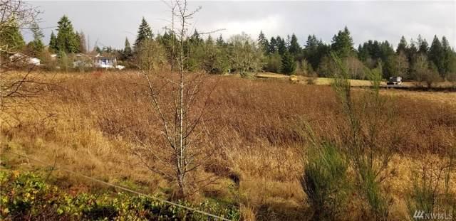 2-xxx Jackson Hwy, Chehalis, WA 98532 (#1553785) :: Canterwood Real Estate Team