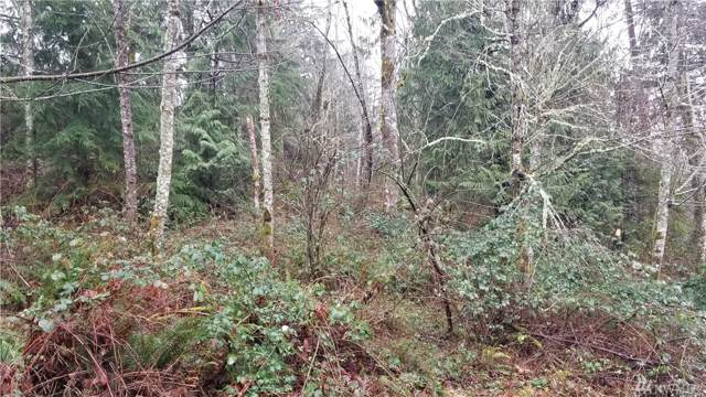 27005 262nd Ave SE, Ravensdale, WA 98051 (#1553971) :: Keller Williams Realty