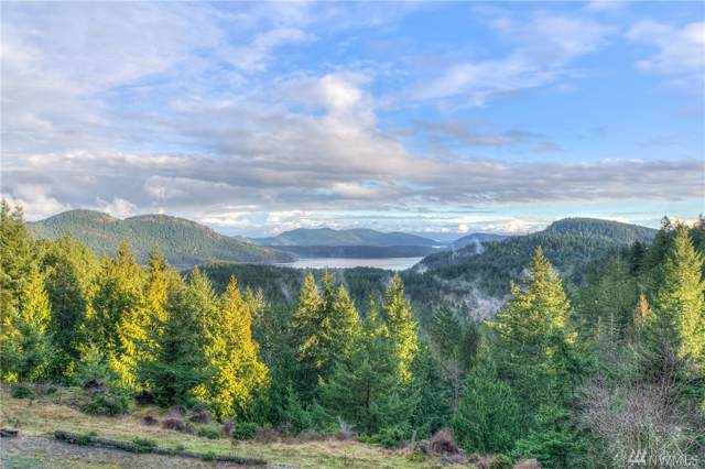39 Maria Lane, Orcas Island, WA 98245 (#1554700) :: Commencement Bay Brokers