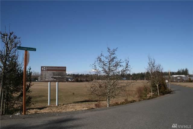 2160 Buchanan Loop Tract 8, Ferndale, WA 98248 (#1555056) :: Keller Williams Western Realty